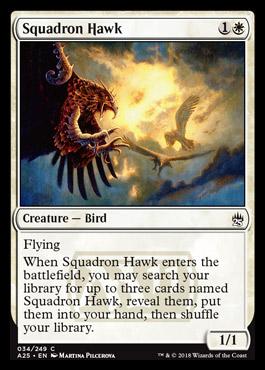 squadronhawk.jpg